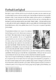 Gavrilo Princip | Analyse