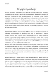 Et lysglimt på afveje | Analyse