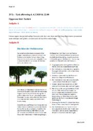 Tschick | Tysk Skriftlig Opgave